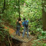 Visite nature avec un guide